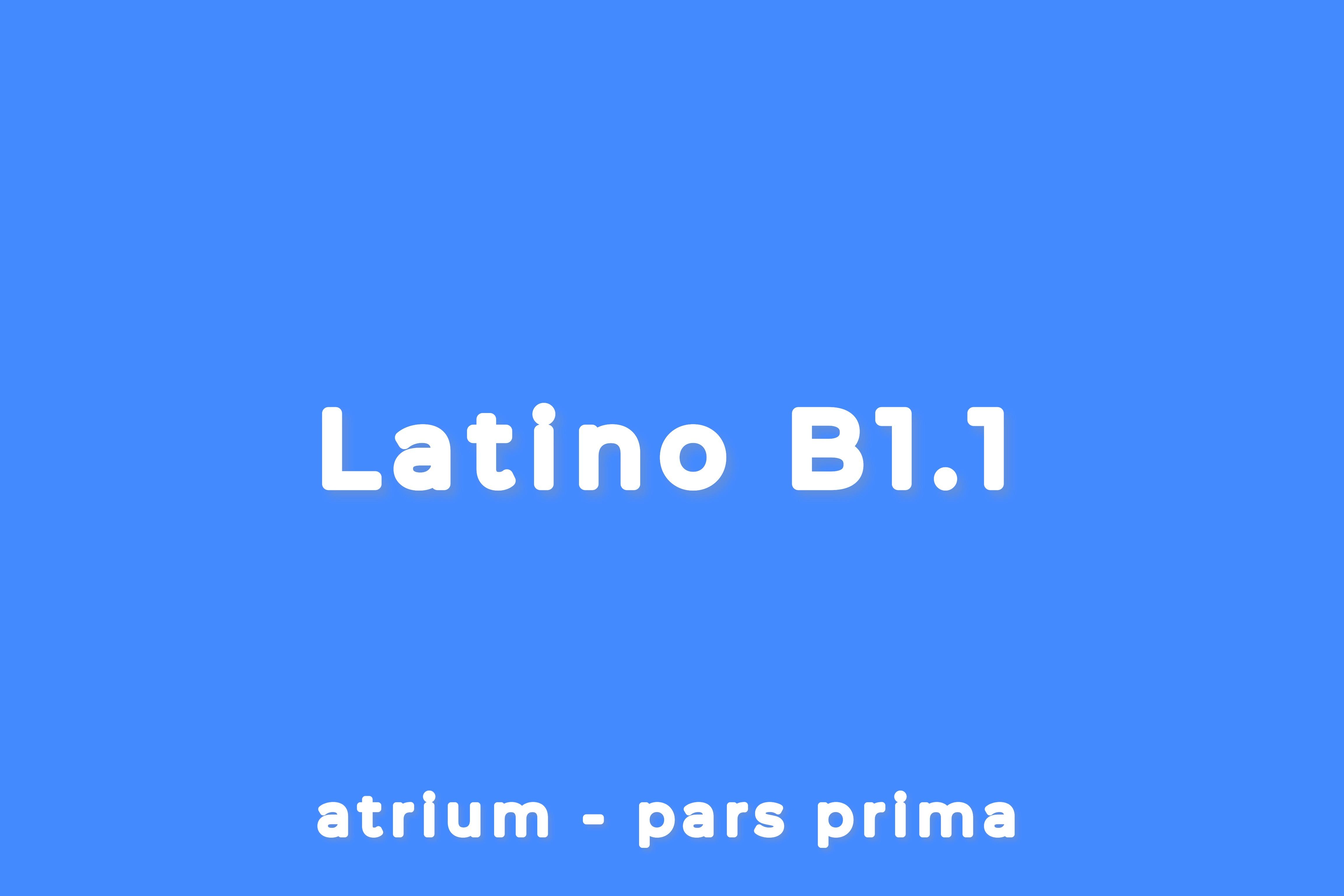 CORSO DI LATINO - LIVELLO B1.1